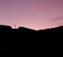 Purple Haze by Derek Kan