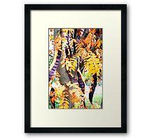 Bean Tree Framed Print