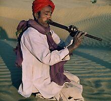 Desert Tunes by wellman