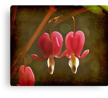 Touching Hearts Canvas Print