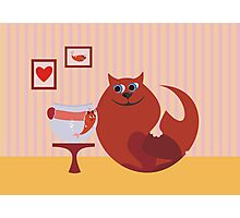 cat and fish in love Photographic Print