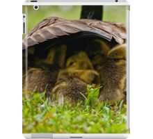 Nappy Time 2 - Ottawa, Ontario iPad Case/Skin