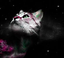 Supernova of the Ethereal Cat by DistortionArt