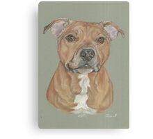 Terrier portrait in pastel Canvas Print