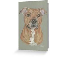 Terrier portrait in pastel Greeting Card