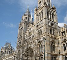 The Natural History Museum by Stephanie Hadley