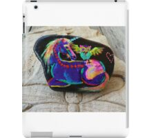 Rock'N'Ponies - SPIKE & THE HOOTOWL iPad Case/Skin