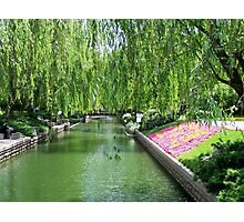 Forbidden City Park, Beijing Photographic Print