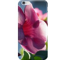 flower in the morning sun - flor en la luz de la mañana iPhone Case/Skin
