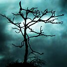 """Crow Magic"" by Karen Cougan"