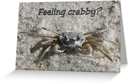 Feeling Crabby? by Patricia Montgomery