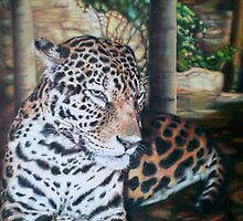 Leopard At Rest by fay akers