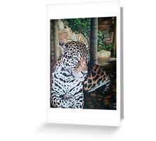 Leopard At Rest Greeting Card
