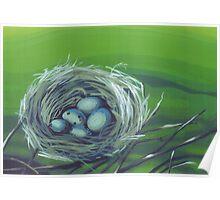 Robin's Nest Poster