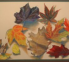 Autumn Leaves by fay akers