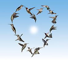 Hummingbird love heart by TJ Devadatta Best