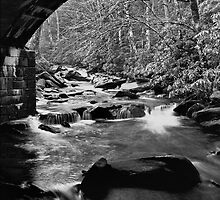Bridge Over Troubled Water 1 by David Lampkins