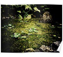 Koi Pond Poster