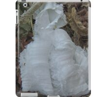 Ice Ribbon - Cloak iPad Case/Skin