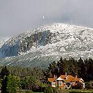 Mt Wellington snow beauty by Anthony Davey