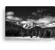 A Winter Scenic Canvas Print