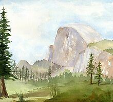 Half Dome- Yosemite by Diane Hall