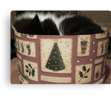 MERRY CHRISTMAS FROM THE CAT IN THE HAT (BOX) Canvas Print