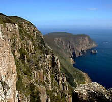 Cape Raoul, Tasman Peninsula by Richard  Stanley