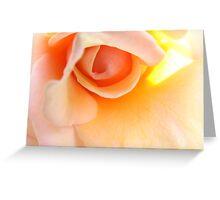 roseheart Greeting Card