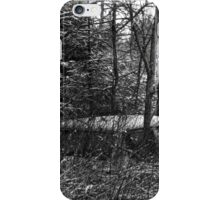 23.12.2014: Old, Abandoned Car in Forest iPhone Case/Skin