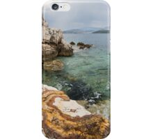 Fossil Beach iPhone Case/Skin