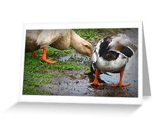 Better Than Pond Water Greeting Card