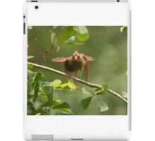 Female Cardinal taking flight iPad Case/Skin