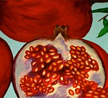 picked off the pomegranate tree by foolingnobody