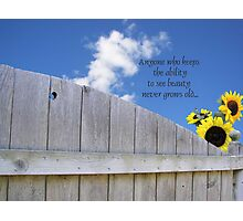 God's Summer Colors Photographic Print