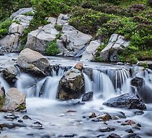 The Rushing Waters of Myrtle Falls by Nicole Petegorsky