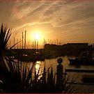 Marbella or Carrickfergus ? by SNAPPYDAVE