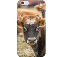 Cow 2 iPhone Case/Skin