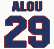 National baseball player Felipe Alou jersey 29 by imsport