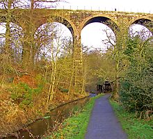 Almondell Viaduct III by Tom Gomez