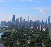 Chicago skyline in summer by mvpaskvan