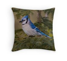 Blue Jay - Algonquin Park, Ontario Throw Pillow
