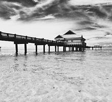Florida Coast Boardwalk B|W by ProjectSpearman