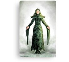 Fantasy Elf Canvas Print