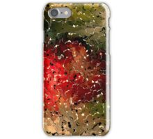 Scraps colors by rafi talby  iPhone Case/Skin