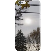 Cold but Beautiful iPhone Case/Skin