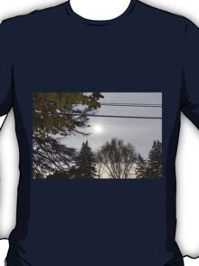 Cold but Beautiful T-Shirt