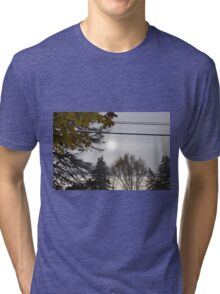 Cold but Beautiful Tri-blend T-Shirt