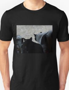 Which Way Did He Go? T-Shirt