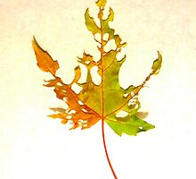 Somebody had Leaf for Lunch – Green Three by Mike Solomonson
